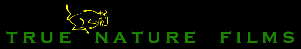 True Nature Films Logo